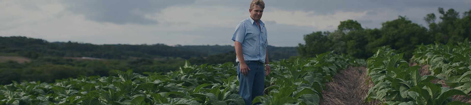 Discover what PMI is doing to protect the farm ecosystem