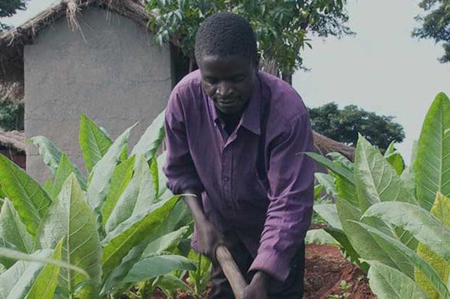 banner_good-agricultural-practices-v3