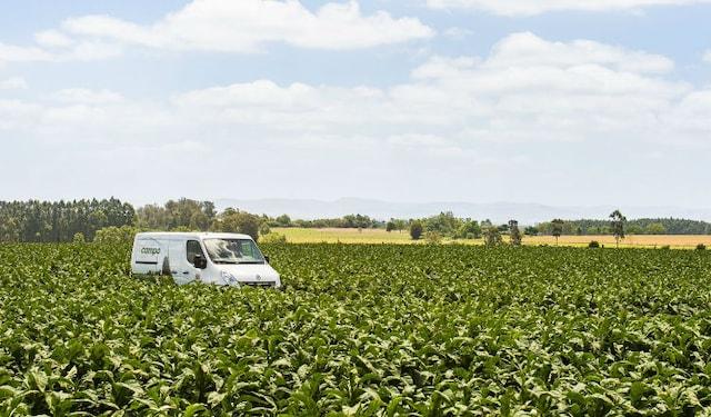 +campo van in field in Brazil