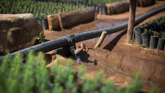 img_pmi_sustainability_water_stewardship_thumb