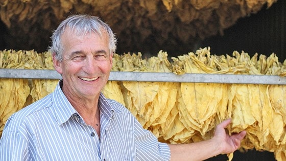 This is how we do it: The Swiss tobacco farm opening its barn doors to the world