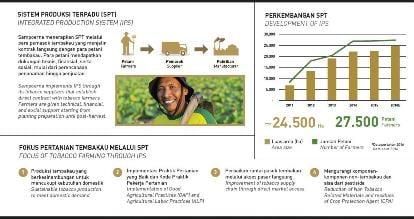 Fakta Kemitraan Pertanian Tembakau