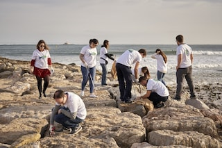 Beach clean up Portugal case study