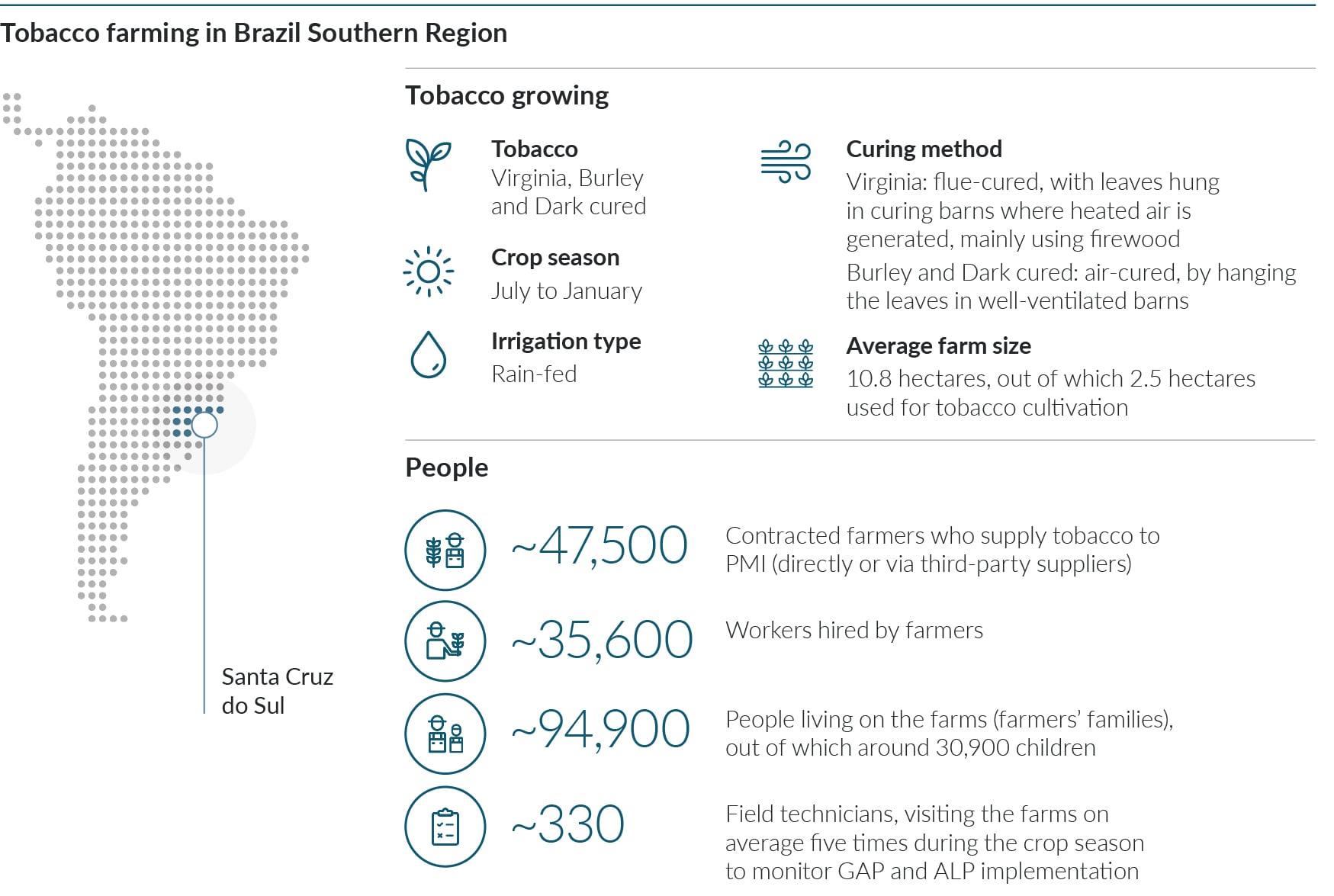 p169_Tobacco_farming_growing_people