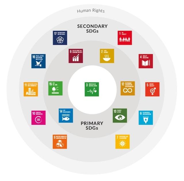 PMI SDGs Circle infographic