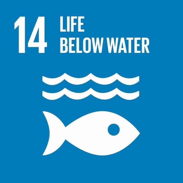 SDG 14 icon
