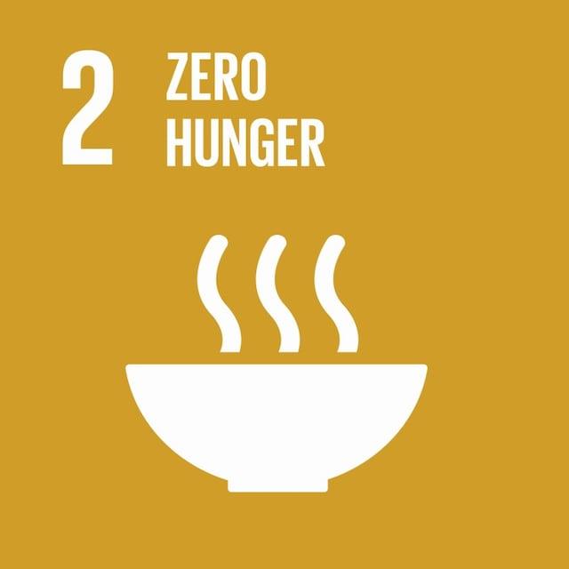 SDG 2 icon