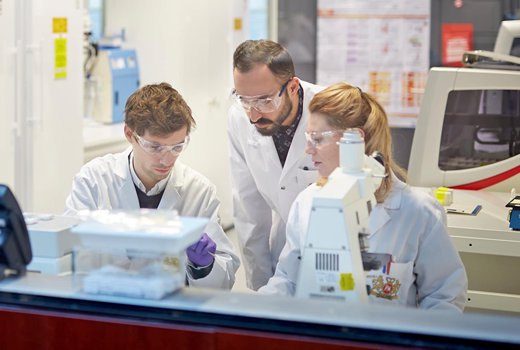 Scientists mixed trio cube arthighcrop