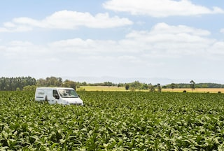 +campo van on farm in brazil
