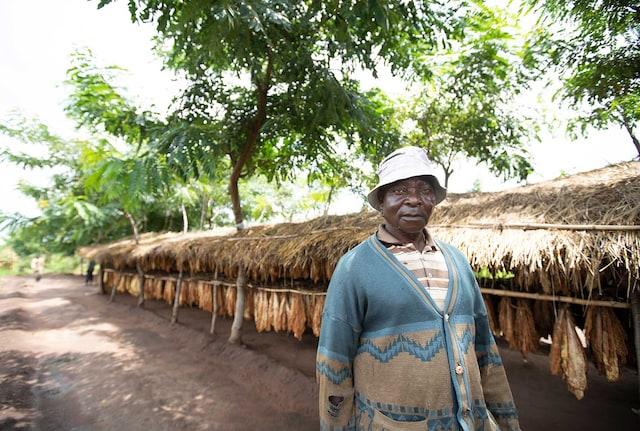 malawi-case-study-hero