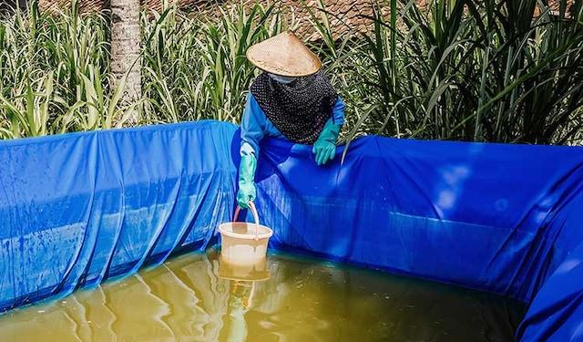 water-stewardship-progress-thumbnail