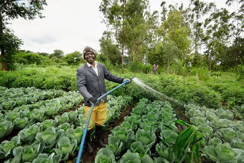 Farmer Mozambique crop diversification
