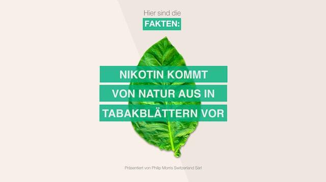 Thumbnail_Nicotine_DE