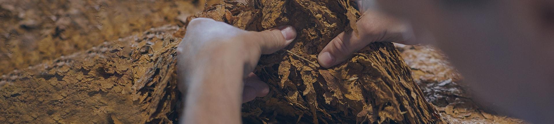 Banner_making-cigarettes
